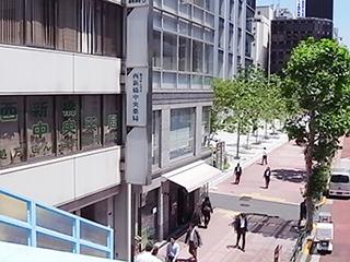 西新橋中央薬局<br>(港区)